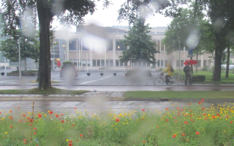 Radboud in the rain