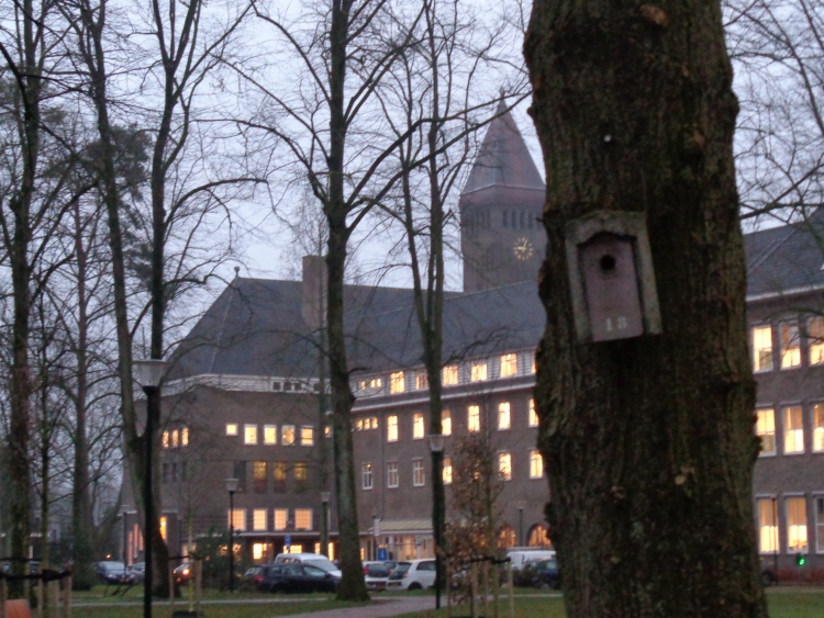 birdhouse at the Berchmanianum